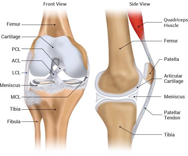 Knee Surgeon Chicago Illinois - Steven Chudik MD