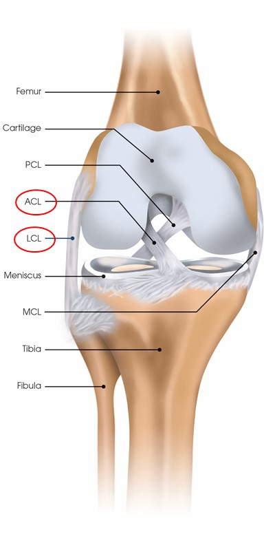 New functional capacity evaluation for ACL injuries